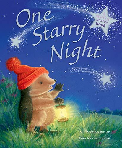 One Starry Night: Butler, M Christina