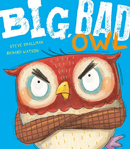 9781848957503: Big, Bad Owl