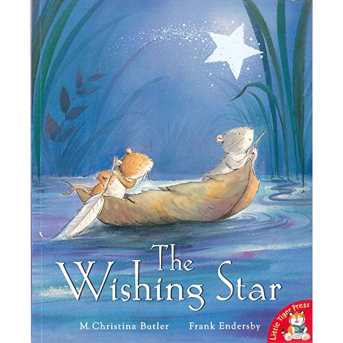 9781848958715: The Wishing Star
