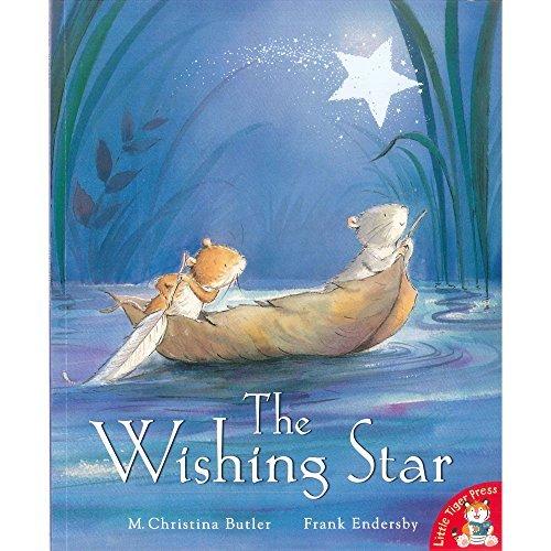 9781848958715: The Wishing Star