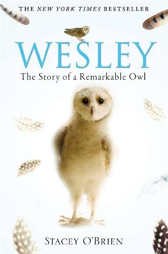 9781849010580: Wesley: The Story of a Remarkable Owl