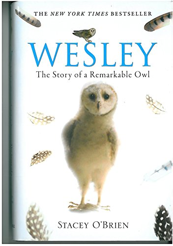 9781849011969: Wesley: The Story of a Remarkable Owl