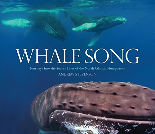 9781849016179: Whale Song: Journeys Into the Secret Lives of the North Atlantic Humpbacks