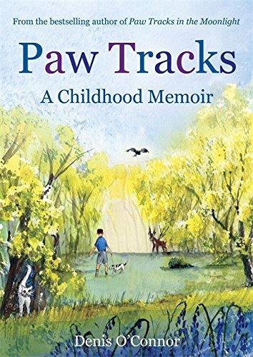 9781849019972: Paw Tracks