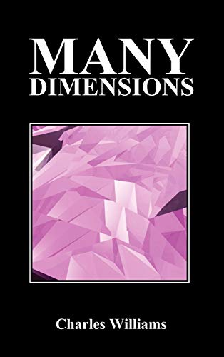 9781849029360: Many Dimensions