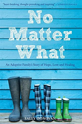 9781849054317: No Matter What: An Adoptive Family's Story of Hope, Love and Healing