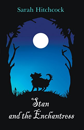 9781849146593: Stan and the Enchantress