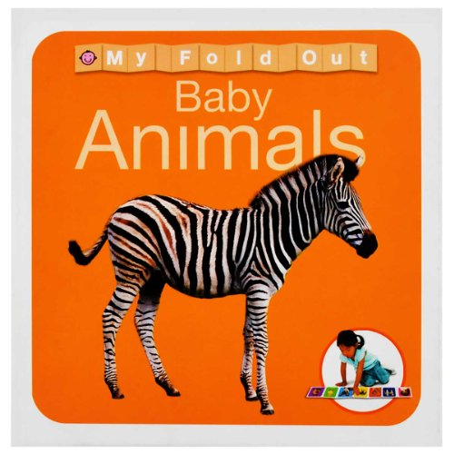 9781849154338: Animals (My Fold Out Books) (Wipe Clean Activity Flashcards)