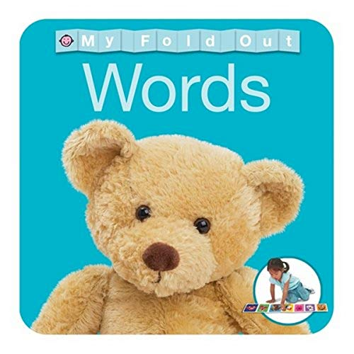 9781849154345: Words. (My Fold Out Books)