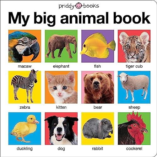 9781849154628: My Big Animal Book.