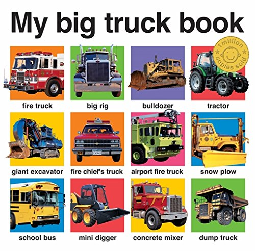 My Big Truck Book.: Roger Priddy