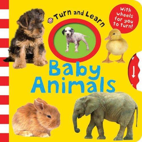 9781849155632: Baby Animals.