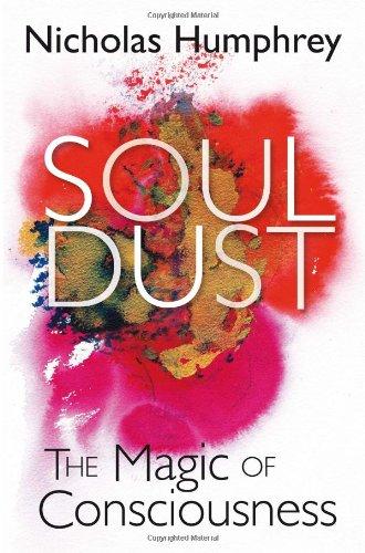 9781849162371: Soul Dust