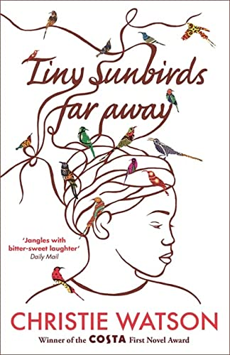 9781849163750: Tiny Sunbirds Far Away