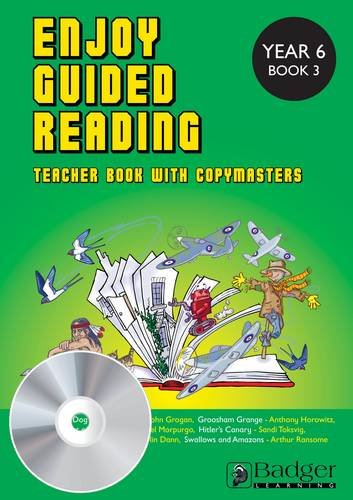 9781849264129: ENJOY GUIDED READING YEAR 6 BOOK 3