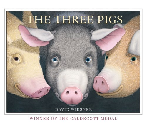 9781849394055: The Three Pigs