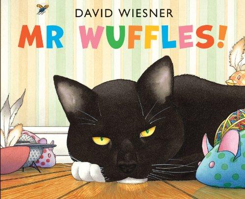 9781849397803: Mr Wuffles!