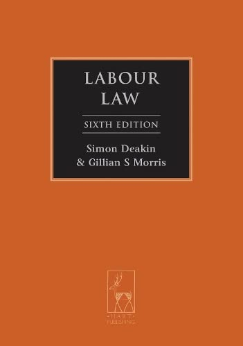 9781849463416: Labour Law