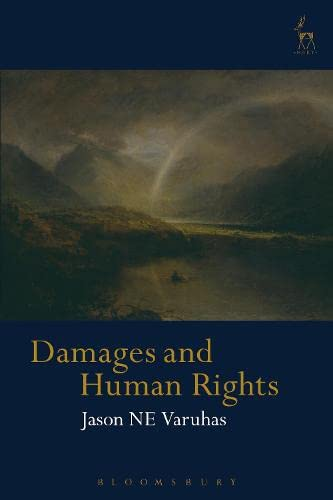 9781849463720: Damages and Human Rights