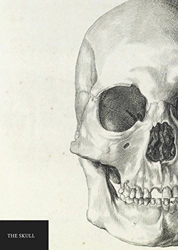 Natural History Museum: A5 Skull Notebook: Natural History Museum