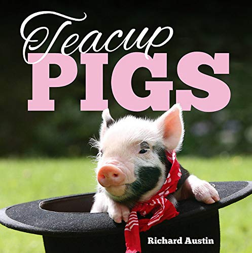 9781849535403: Teacup Pigs