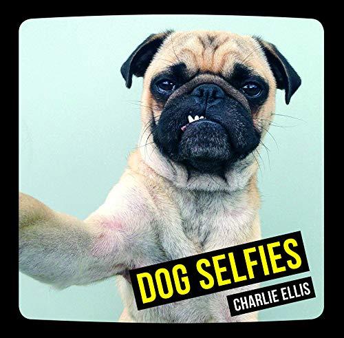 9781849536455: Dog Selfies
