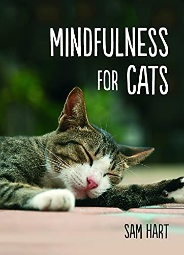 9781849537803: Mindfulness for Cats
