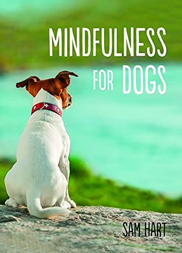 9781849537810: Mindfulness for Dogs