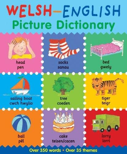 9781849671132: Welsh-English Picture Dictionary