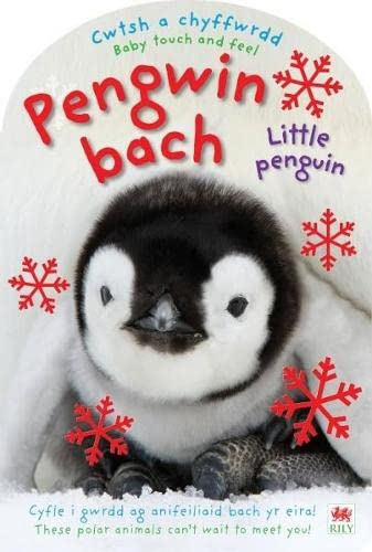 Pengwin Bach / Little Penguin (Cwtsh a: Priddy