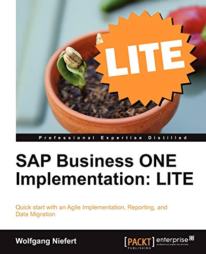 9781849683784: SAP Business ONE Implementation: LITE