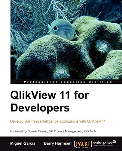 9781849686068: QlikView 11 for Developers: Effective analytics techniques for modern Business Intelligence