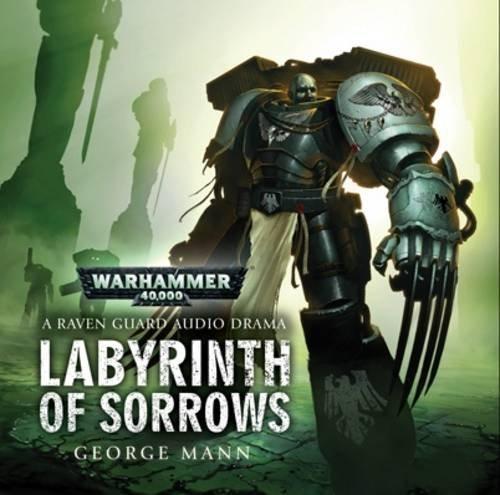 9781849701327: Labyrinth of Sorrows (Warhammer 40000)