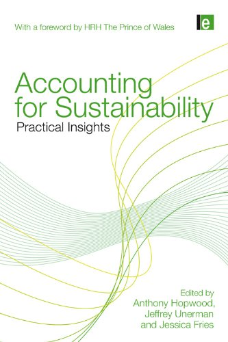 9781849710664: Accounting for Sustainability: Practical Insights