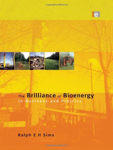 9781849710695: The Brilliance of Bioenergy: In Business and In Practice
