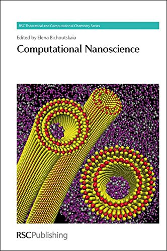 Computational Nanoscience (RSC Theoretical and Computational Chemistry: Elena Bichoutskaia (Editor),