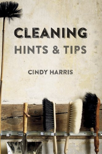9781849755788: Cleaning Hints & Tips