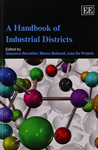 9781849800020: A Handbook of Industrial Districts