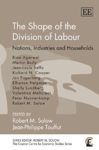 9781849805100: The Shape of the Division of Labour: Nations, Industries and Households (Cournot Centre for Economic Studies series) (The Cournot Centre for Economic Studies)