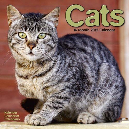 9781849811750: Cats 2012 Wall Calendar #30127-12