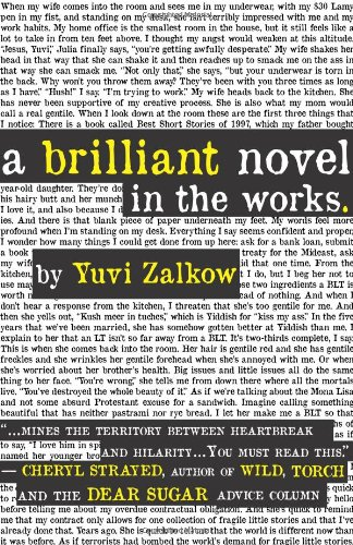 9781849821650: A Brilliant Novel in the Works