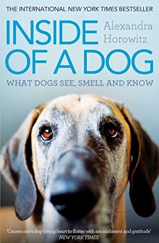 9781849835671: Inside of a Dog