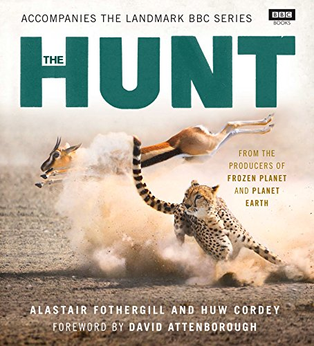 9781849907224: The Hunt