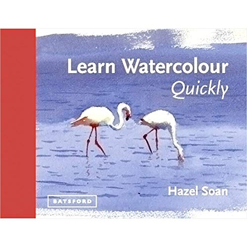 9781849941402: Learn Watercolour Quickly