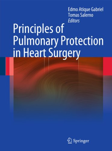 Principles of Pulmonary Protection in Heart Surgery: Gabriel, Edmo Atique (Editor)