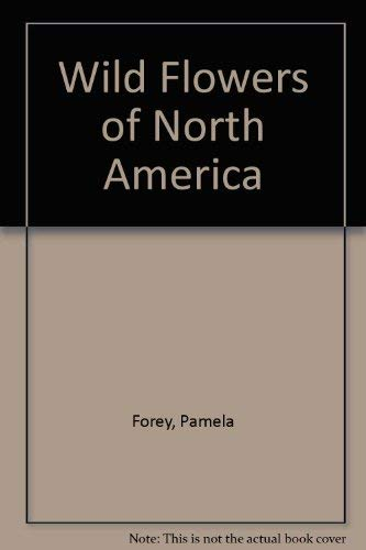 9781850281177: Wild Flowers of North America