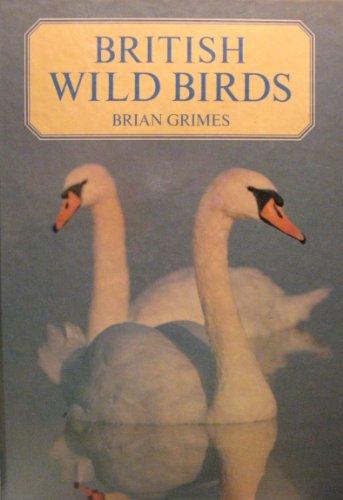 9781850512783: British Wild Birds