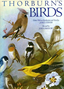9781850520184: Thorburn's Birds