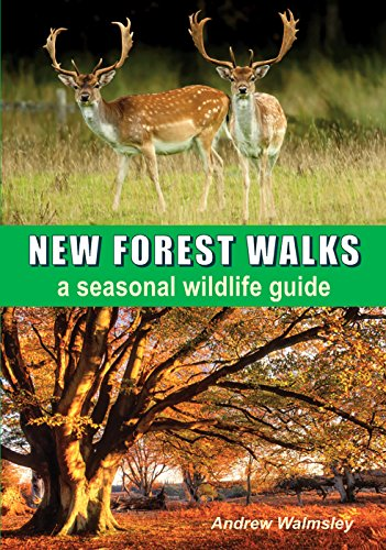 9781850589846: New Forest Walks a seasonal wildlife guide