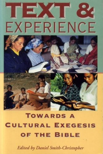 9781850757405: Text And Experience: Towards a Cultural Exegesis of the Bible (Biblical Seminar)